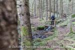 Kleiner Bach im Bayerwald