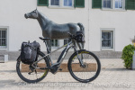 Pferd oder Fahrrad?