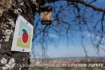 Wandersymbol für den Früchtetrauf