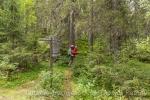 Gleich verschlingt uns der Wald
