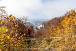 Blick auf Ruine Gutenstein