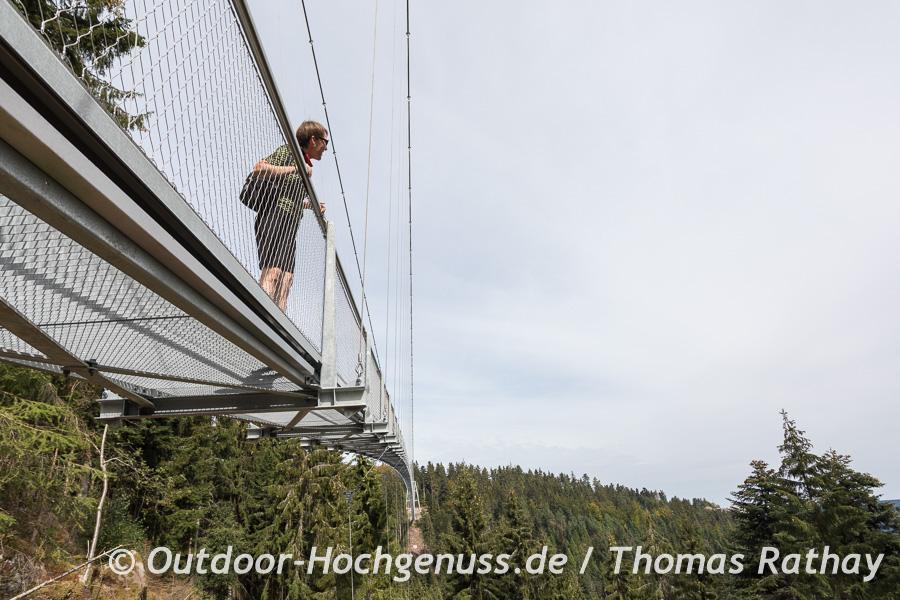 Auf der WildLine Hängebrücke