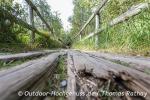 Der alte Bohlenweg soll leider bald erneuert werden.