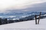 Ausblick zwischen Oberstaufen und Oberreute