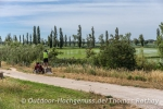 Zartgrüne Reispflanzen auf den letzten 50 km vor dem Ziel am Mittelmeer