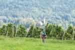Herrliche Aussichten im Weinberg