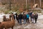 Gruppenbild mit Lama