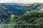 Abendlicher Ausblick in die Gorges du Chassezac
