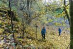 Schöne Waldpassage auf der Donauversinkung