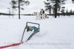Schneeanker helfen das Gespann zu sichern.