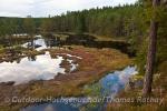 Viel Wald, Wasser und Abenteuer gilt es im Naturreservat zu entdecken