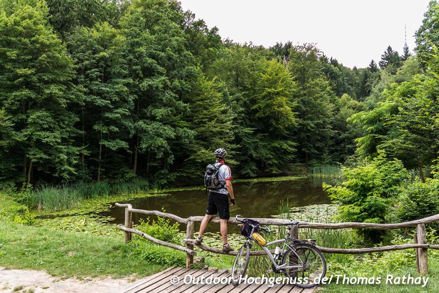 Seeblick mitten im Wald