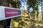 Der Rappenfelsensteig - Wandern auf neuen Genießerpfaden im Schwarzwald