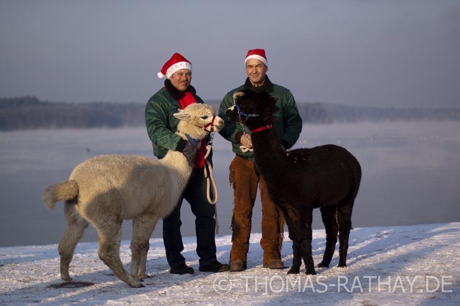 Weihnachten am Werbellinsee mit einheimischen Tierarten!?