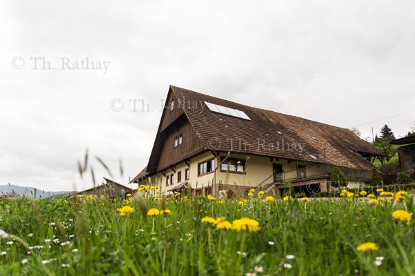 Hofladen und Erzeugerhof *Danisenhof*