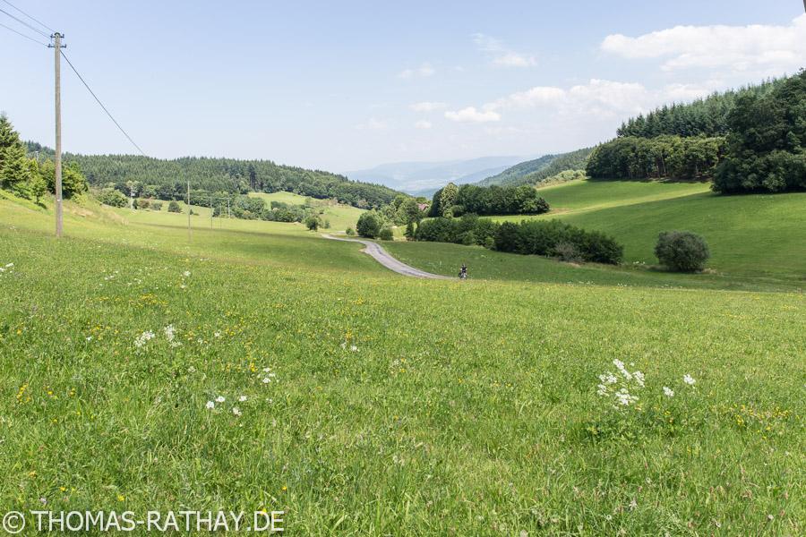 Ausblick vom Sattel ins Tal
