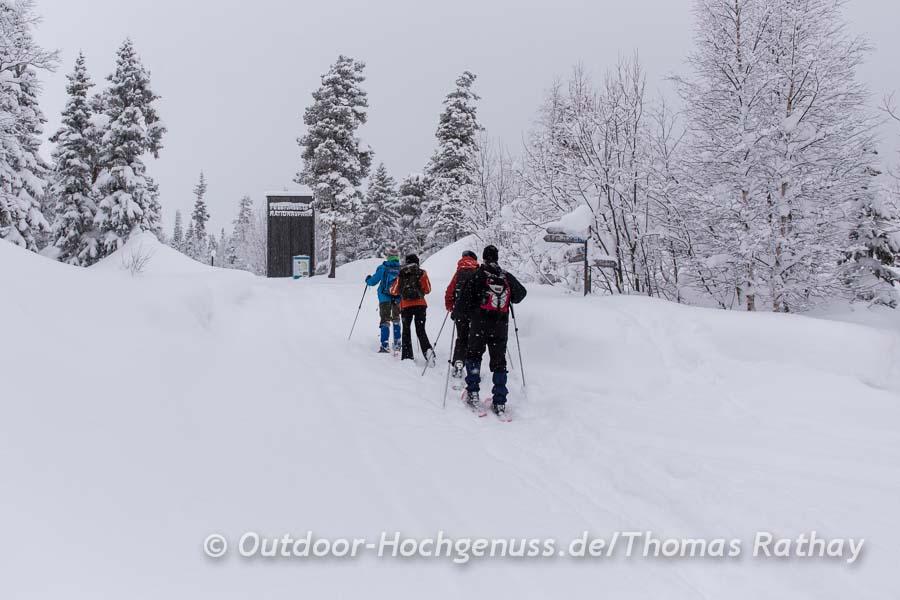 Schneeschuhwanderung zum Njupeskär.
