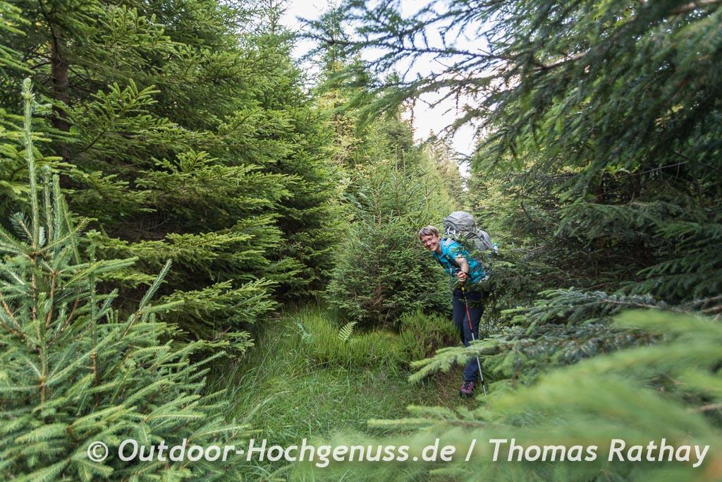 Letzte Meile durch den Wald auf dem Weg zum Trekking-Camp