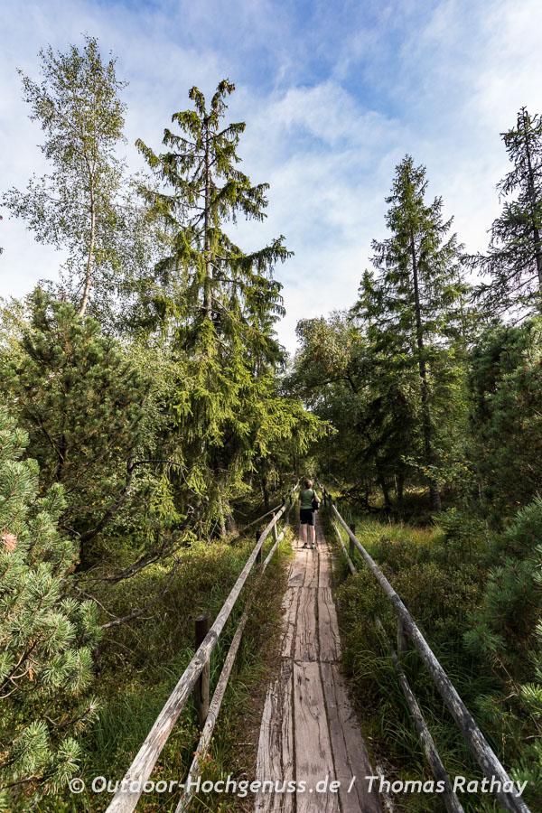Naturschutzgebiet Hohlohsee