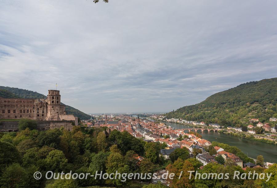 Schloss Heidelberg und der Neckar.
