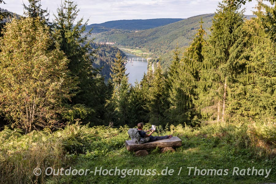 Neckar mit der Schleuse Rockenau