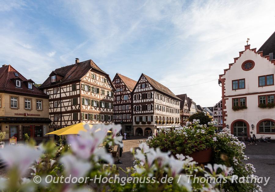 Mosbachs Altstadt