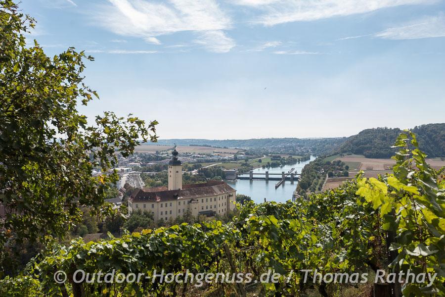 Schloß Horneck in Gundelsheim in den Weinbergen