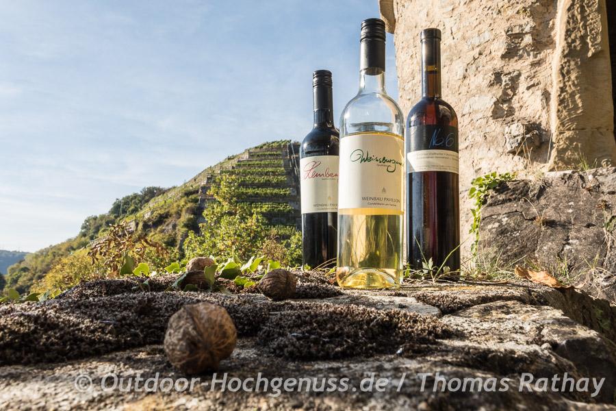 Stadtführung mit Weinprobe in Gundelsheim