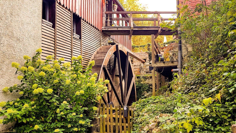 Mühlenwanderung im Schwäbischen Wald