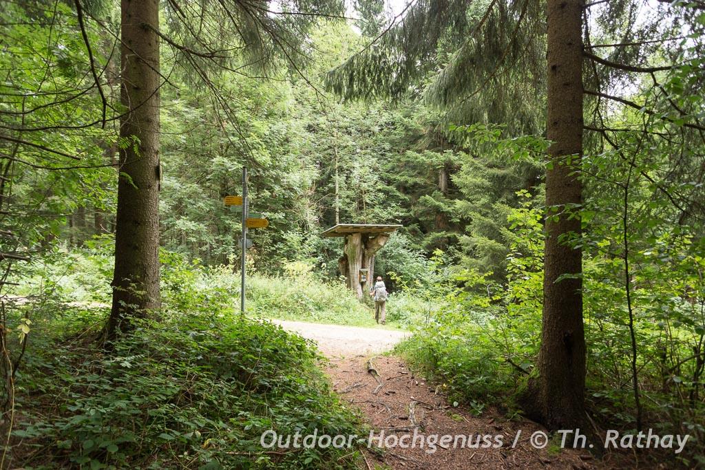 Wandern auf dem Donauberglandweg im Naturpark Obere Donau
