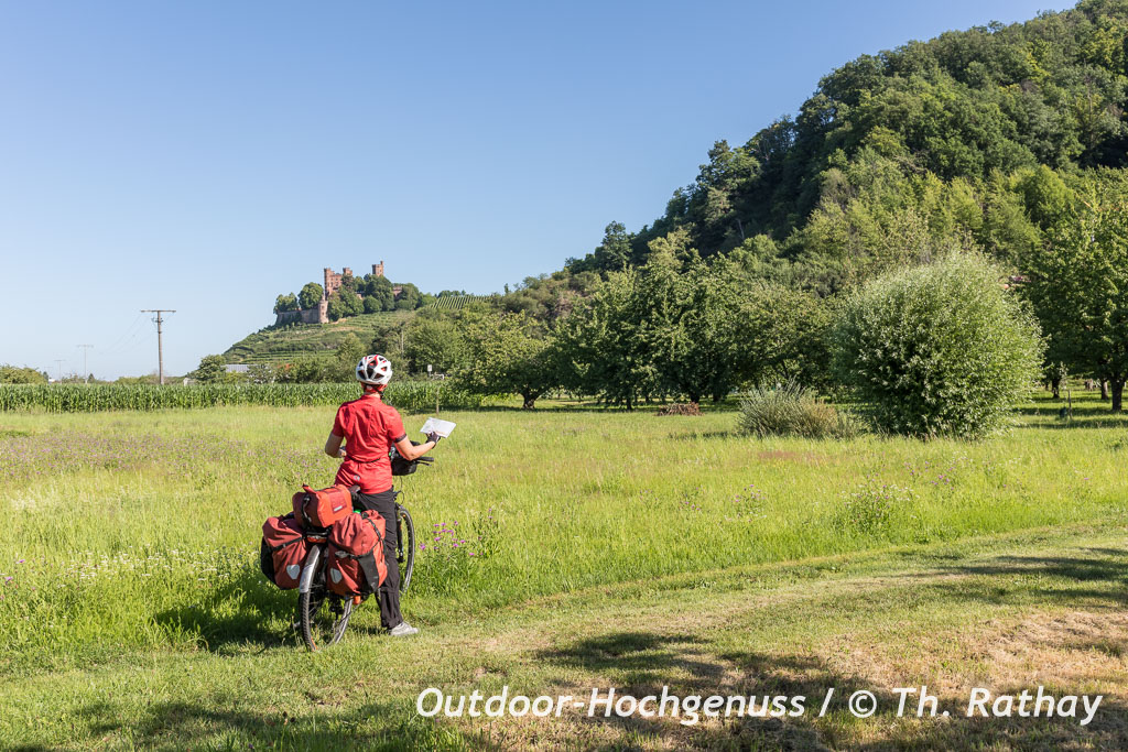 Das Schloss Ortenberg thront erhaben auf einem Rebenmeer, Badischer Weinradweg.