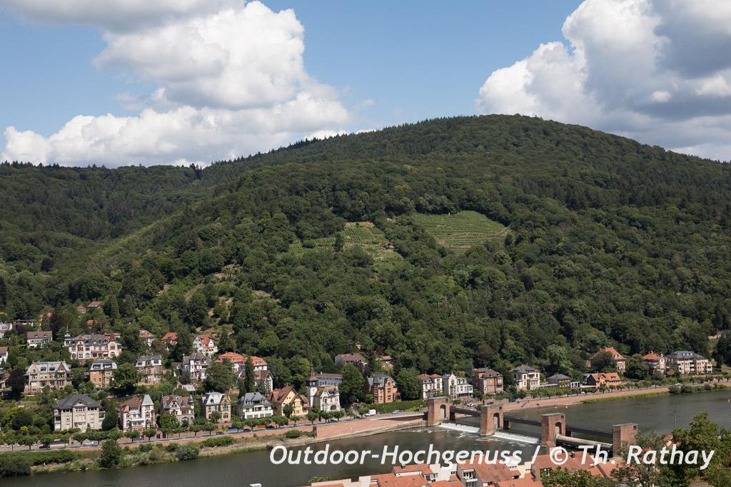 Sonnehalde bei Heidelberg