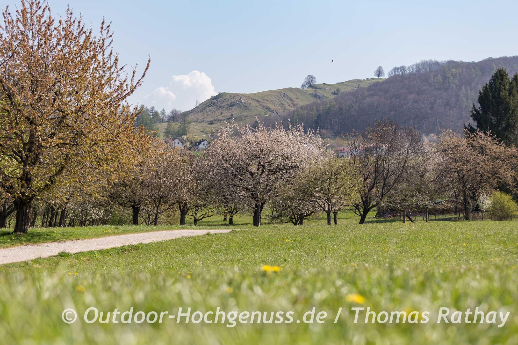 Wandern auf dem Gustav-Ströhmfeld-Weg auf der Schwäbischen Alb
