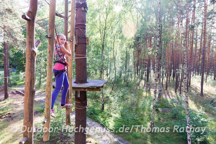 Hängende Baumstümpfe