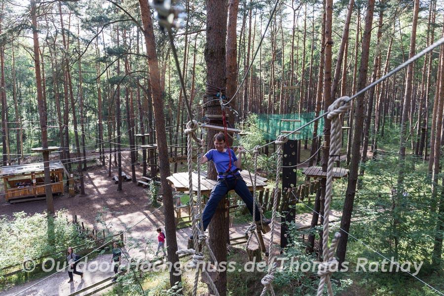 Rollenden Baumstümpfe