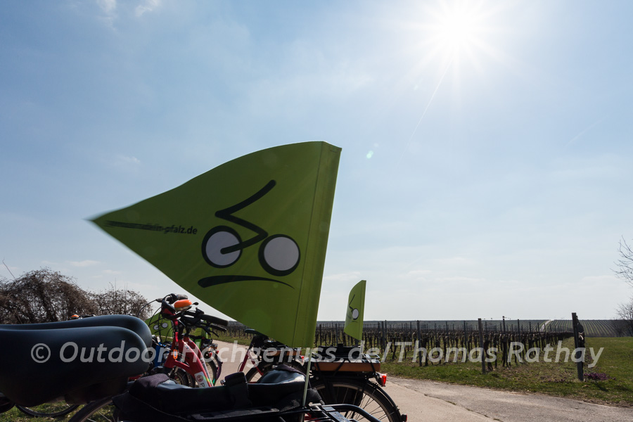 Genussradeln mit dem E-Bike durch die Pfalz