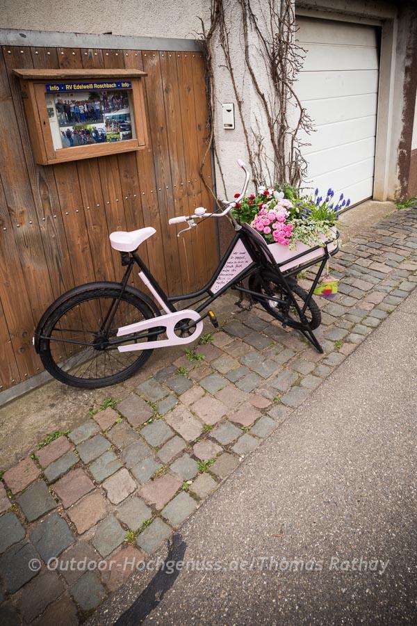 Kunst am Rad in Roschbach