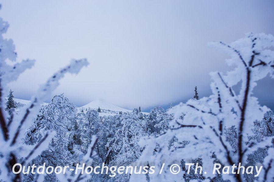 Schneeschuhtouren im Nipfjäll Dalarna