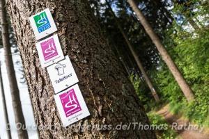 Wandern auf der Tafeltour *Losheimer See*
