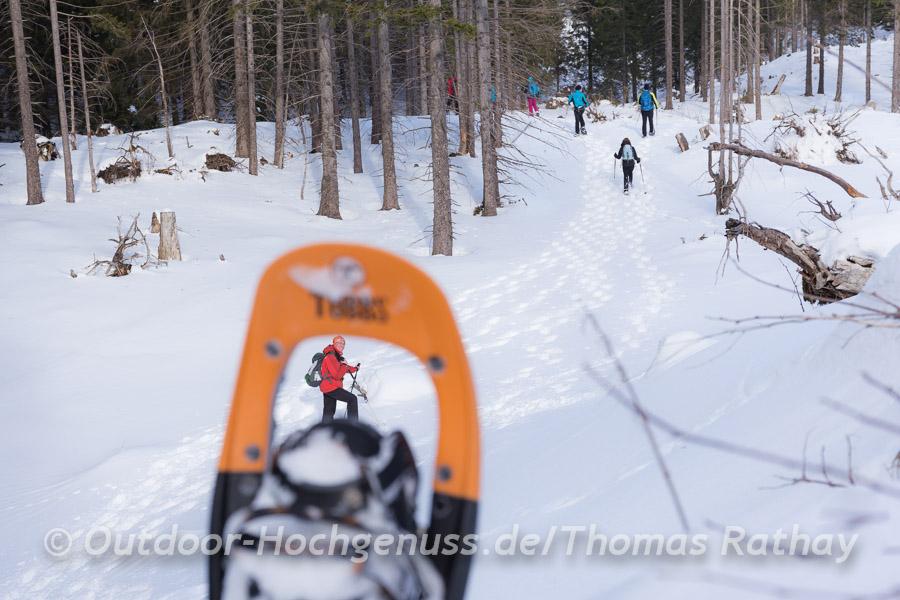 Guter Durch- und Ausblick bei unserer Schneeschuhtour.