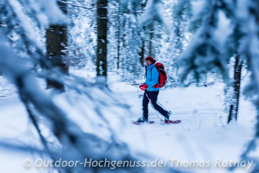 Mit Schneeschuhen im Wald.