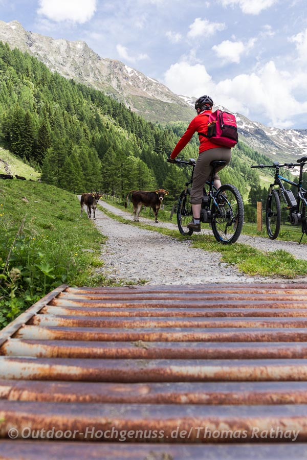 E-Mountainbiketour in Südtirol