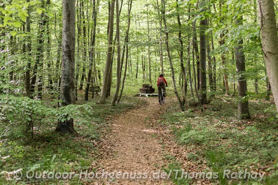 Gewollte Irritation im Vents des Forêts