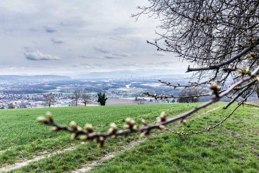 Ausblick vom Huttinger Kreuz