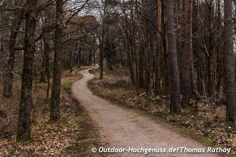 Wandern auf dem Premiumwanderweg *Gernsbacher Runde*