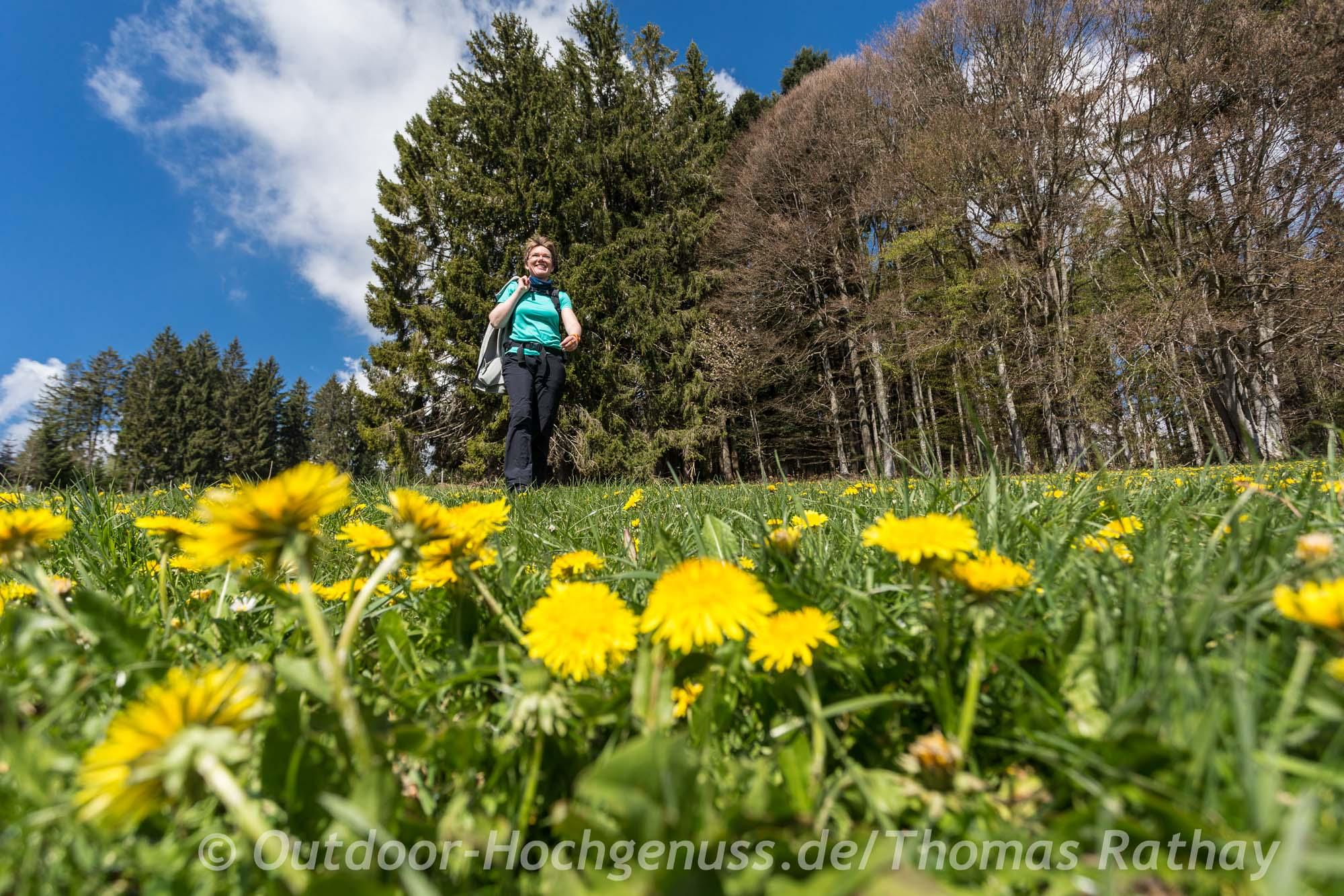 Wandern auf neuen Genießerpfaden im Schwarzwald.