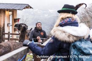 #bodensee4u, Lamawanderung, Alpaka